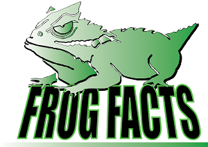 Frog Facts logo